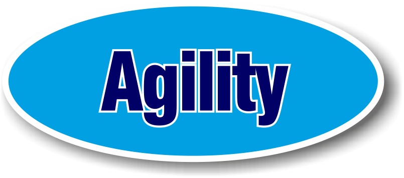 sporthanddoek agility